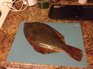 Flounder aka Devil Fish