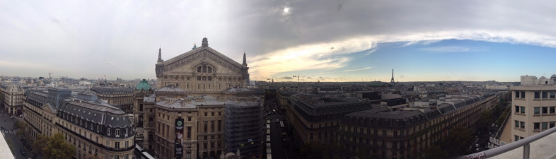 View from Galleries Lafayette Rooftop